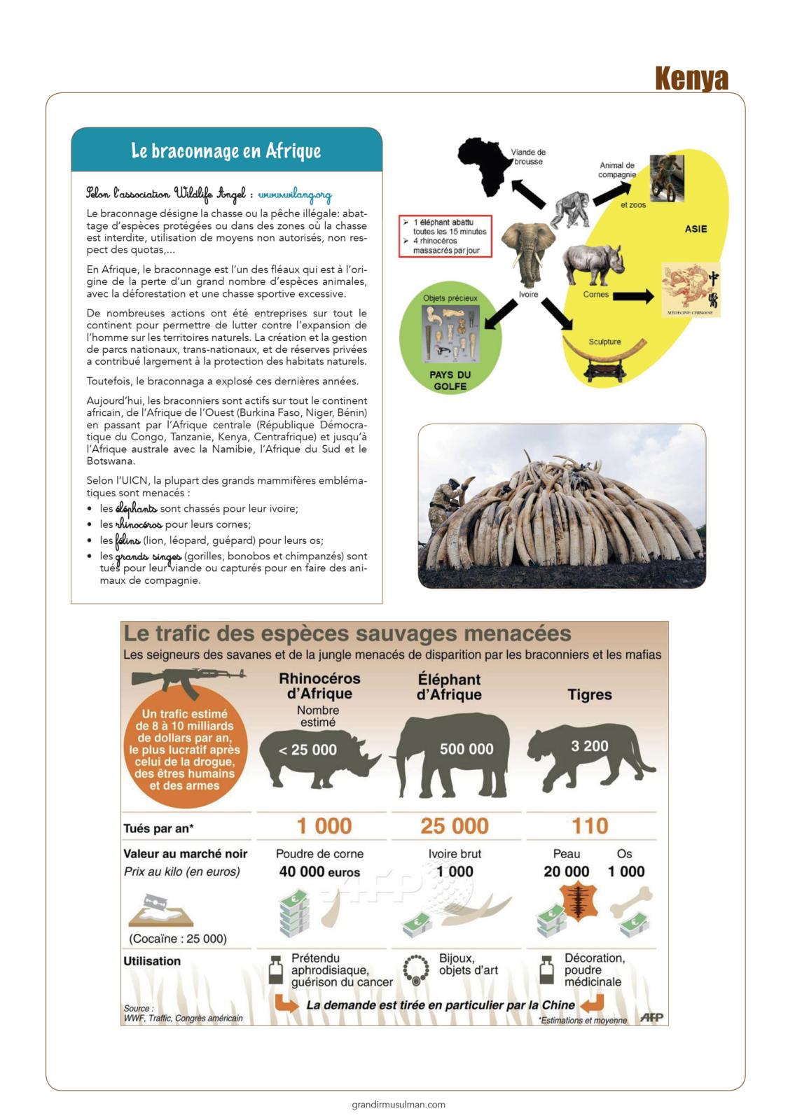 Notre Tour du monde : Kénya