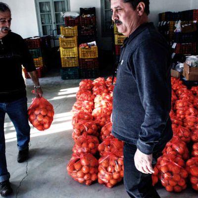 Dopo l'avvento della crisi, i greci lavorano per promuovere l'economia 'sociale'