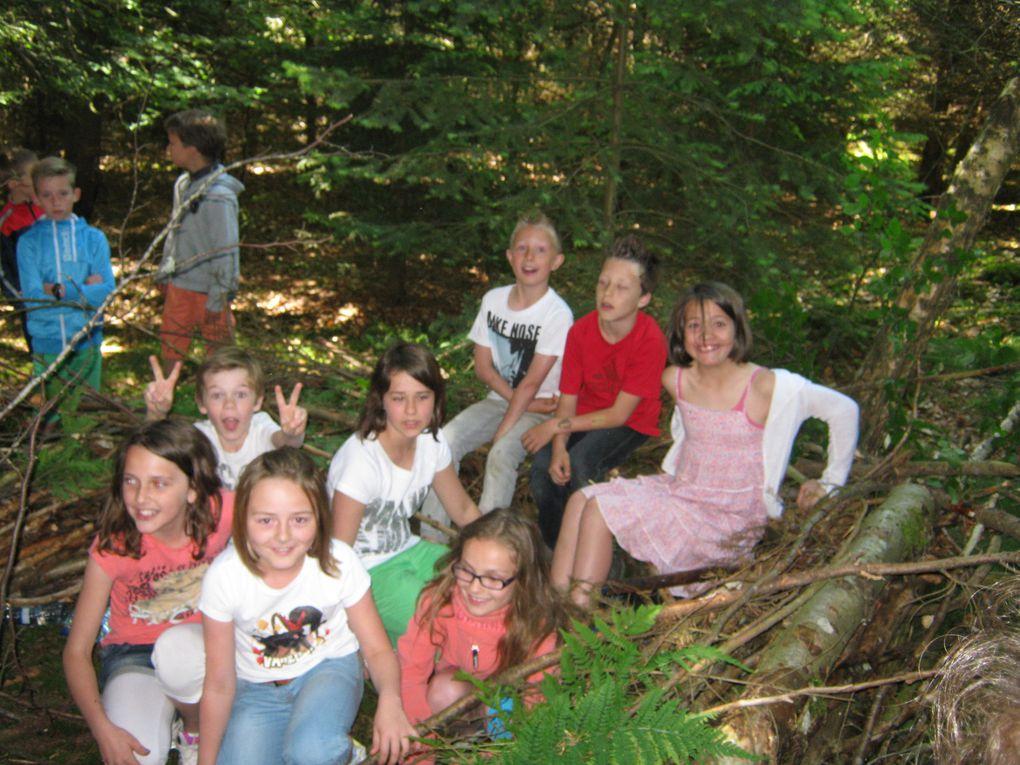Excursion en forêt d'Houffalize