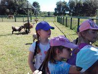 Lakanal - ferme pédagogique (19 Juillet)
