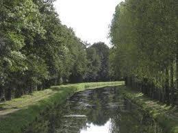 Le Loir-et-Cher par la Sologne.