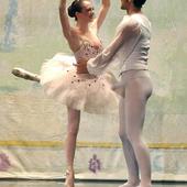 Photo coquine de Ballet: Cygne mâle en lévitation - Doc de Haguenau