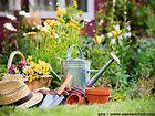Conseils de jardinage pour le dimanche 9 mai 2021
