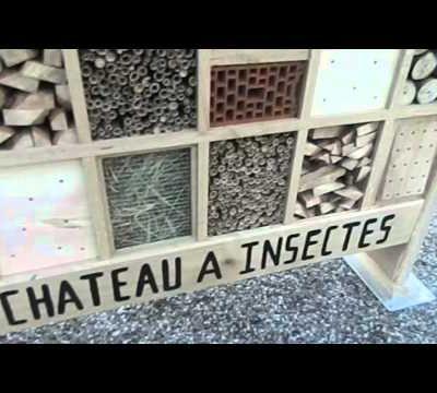 Hotel à insectes sur mesure