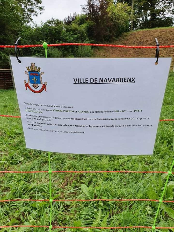 NAVARRENX : Les mousquetaires en renfort pour entretenir les espaces verts des glacis
