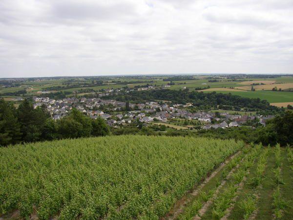 St Georges des Gardes Le Puy du Fou Les bords de la Loire St Aubains sur Layon
