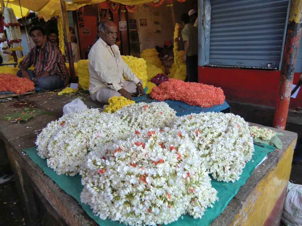 Marchés, foire aux bestiaux, marchés aux fleurs. Priorité aux visages.