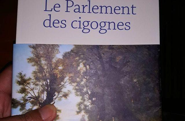 """""""Le Parlement des cigognes"""" de Valère Staraselski"""