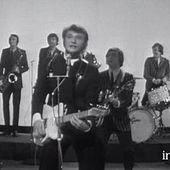 """Johnny Hallyday """"Les coups"""""""