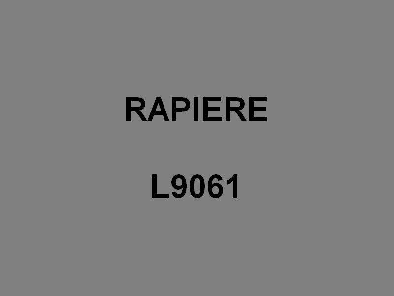RAPIERE  L9061 , Chaland de Débarquement d'Infanterie et de Chars -CDIC
