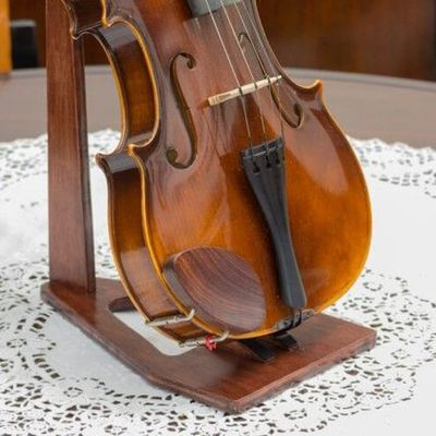 Welcome to Stradivari Strings - Your Most Reliable Violin School