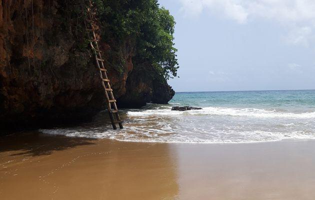 Playa El Valle