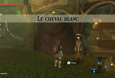 Le cheval blanc SOLUCE