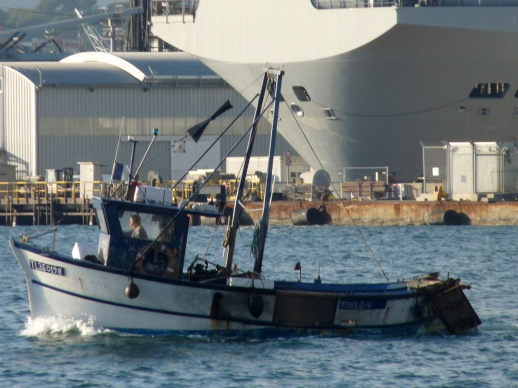 PIERRE  JEAN  TL 350198 , en petite rade de Toulon