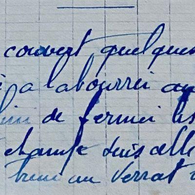 Vendredi 28 septembre 1951 - le verrat