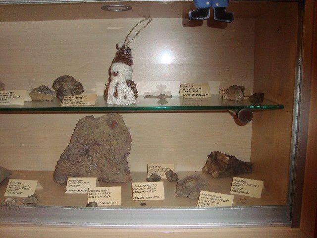 <p>Album des Musées ici et ailleurs</p> <p>Il contient des photos de divers musées locaux et expositions permanentes.</p> <p>Ces pièces n'appartiennent pas à notre collection.</p> <p>Bonne visite !</p> <p>Phil « Fossil »</p>