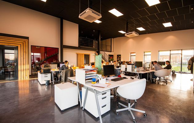 Understanding Psychological Effects of Colors in the Office Space