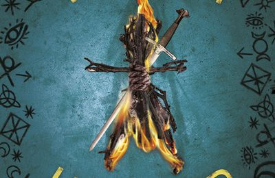 Witch Hunter (tome 1)
