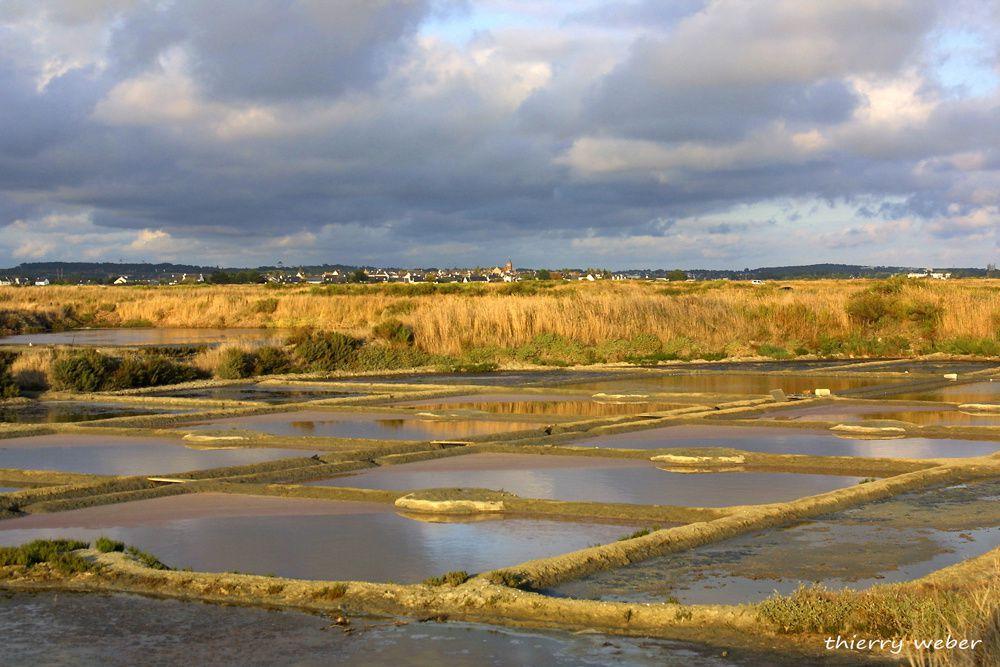 Les marais salants de Guérande et de la Presqu'Ile Guérandaise - Photos Thierry Weber Photographe de Mer