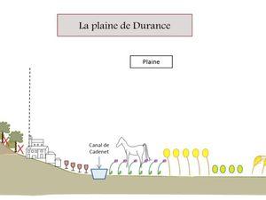 L'agriculture sur le territoire de Cadenet, une longue tradition, un potentiel important, un déclin à corriger !