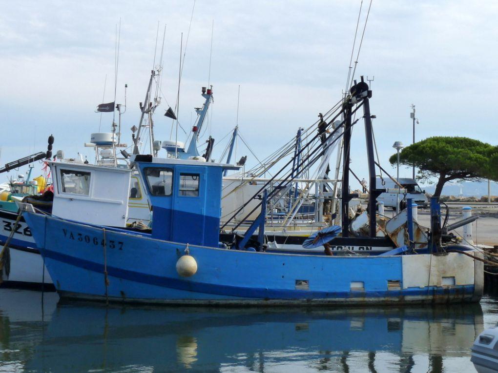 IDEFIX  , VA 306037, dans le port de Toulon