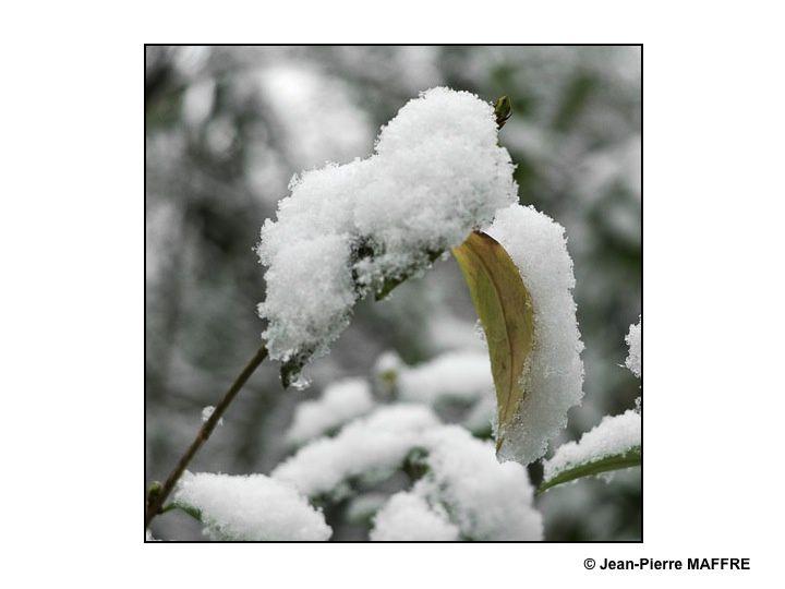 Dans le parc des Buttes Chaumont, à Paris, la neige crée des graphismes inattendus et révèle un autre monde d'une beauté idéalisée et éphémère.