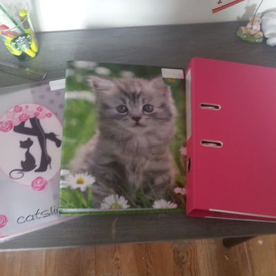 BACK TO SCHOOL #2 : Mes fournitures scolaires