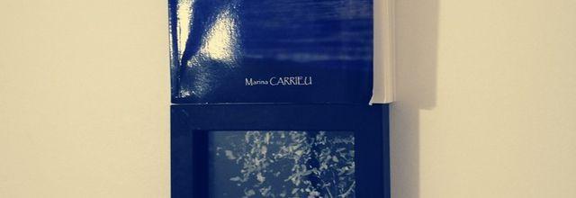 IL Y A DES SILENCES de Marina CARRIEU