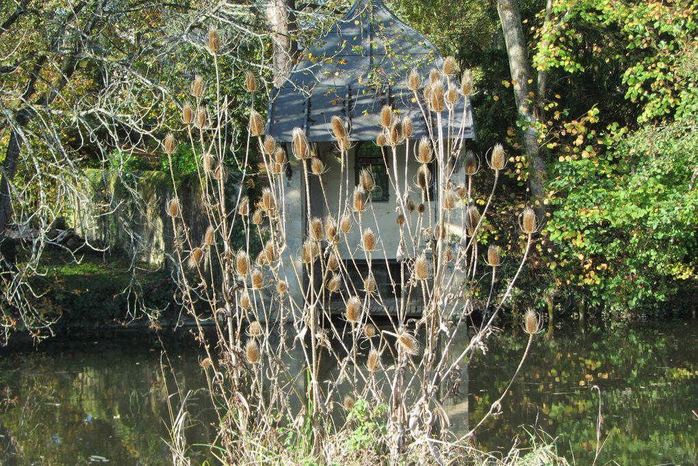 La petite maison au bord de la rivière.