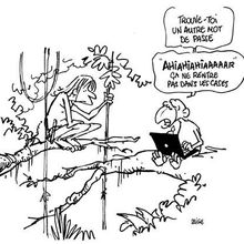 Les blogs célèbres: Tarzan