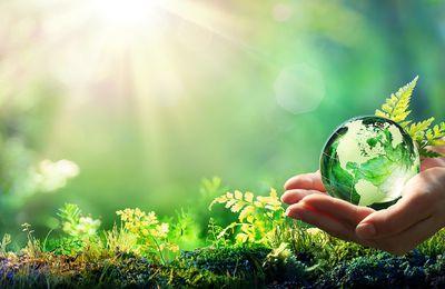 Transition écologique dans le BTP : il est urgent d'anticiper