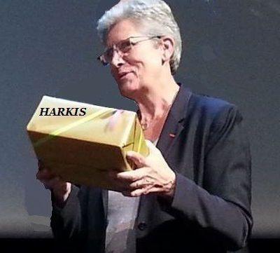 Suite à la rencontre avec Geneviève Darrieussecq, compte rendu de Azni André, les harkis et leurs amis