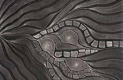 Anna Price Petyarre, l'art du noir et blanc