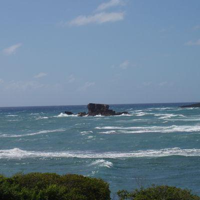 Même le vent et la mer lui obéissent
