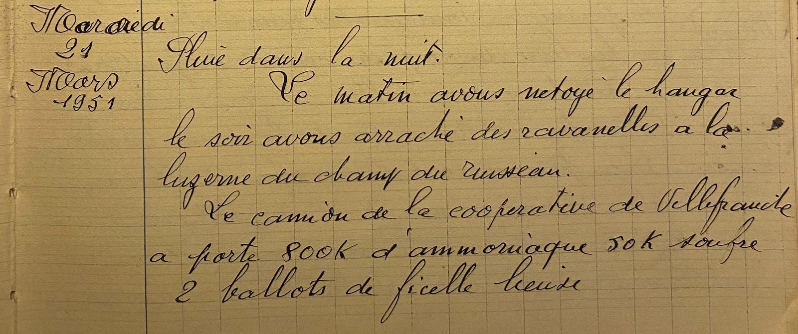 Mercredi 21 mars 1951 - les ravenelles de la luzerne