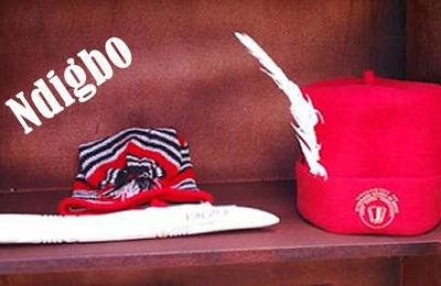 NDI IGBO MUST CLEANSE THEIR LAND QUICKLY, BY RETURNING TO ODINANI AND OMENANI, INSTEAD OF POLITICAL AGITATIONS