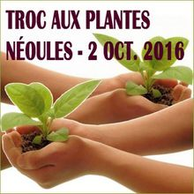 Local Var : Troc de plantes - Néoules - 2 octobre 2016