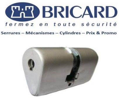Bricard_Ovoide_Lille