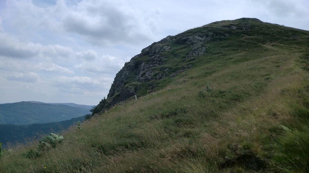 Le versant est (alsacien) est bien plus sauvage et escarpé. C'est dans cette falaise que se plaisent les chamois.