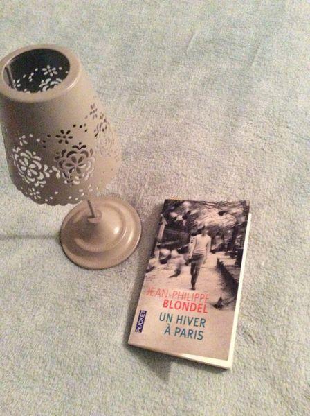 """Un livre dévore en quelques jours : """"un hiver à Paris"""" de Jean Philippe Blondel"""