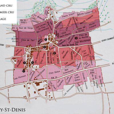 Livre web:  Le Vignoble de Morey Saint Denis