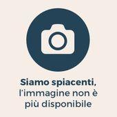 M5S vota «no» al Governo Bersani