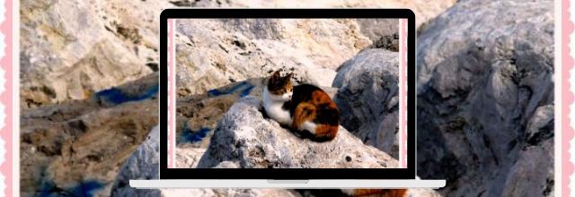 Isabelle sur un rocher