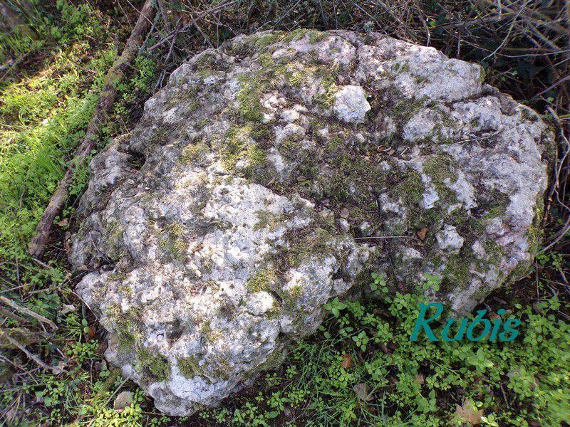 Dolmen des Pierres aux Fées ou de Villeprovert, Morée (41)