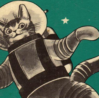 L'Iran veut envoyer un chat persan dans l'espace