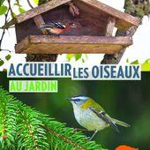 Nouveau livre: accueillir les oiseaux au jardin aux éditions Ulmer - Jard'infos