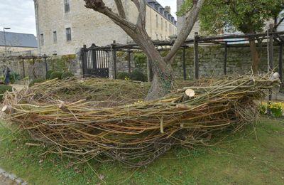 Le plus grand nid du monde pourrait être à Quimper