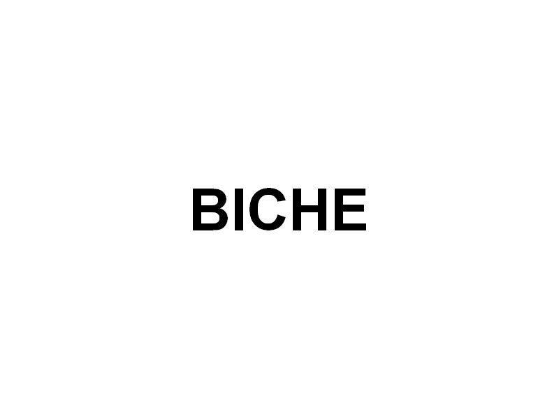 BICHE , en rade de Brest le 15 Juillet 2016