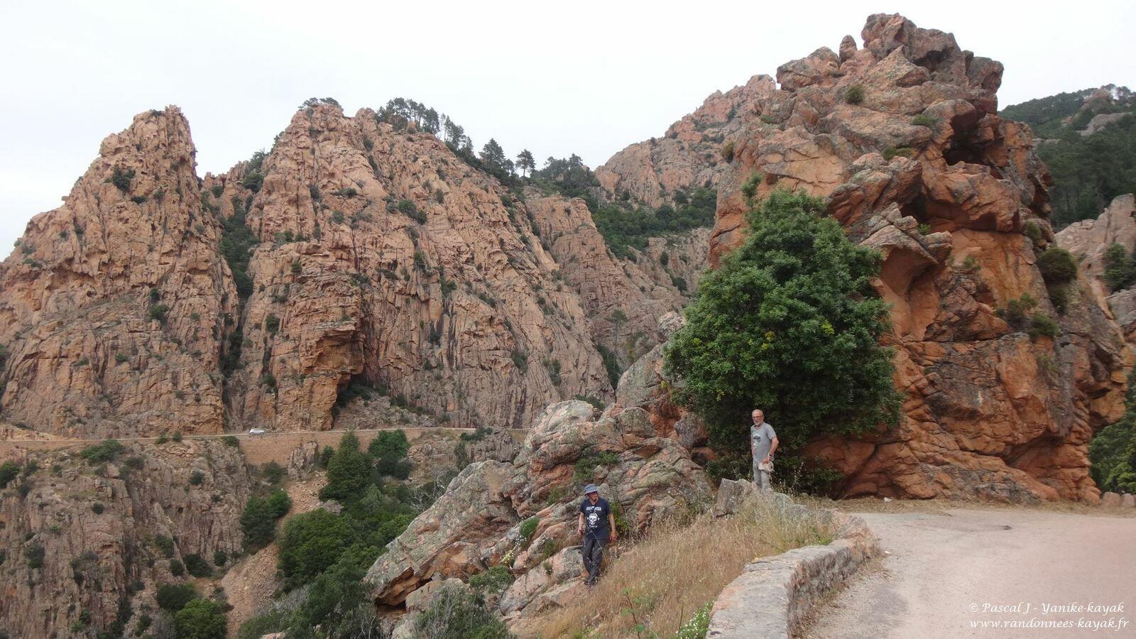 Corsica 2021, la beauté, essentielle, de la nature - Chapitre 10 : balade en forêt de Piana
