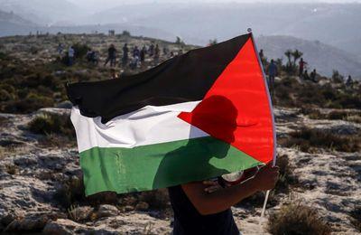 De la solution à deux États au plan Trump : ce que le monde n'a pas compris de la cause palestinienne (MEE)